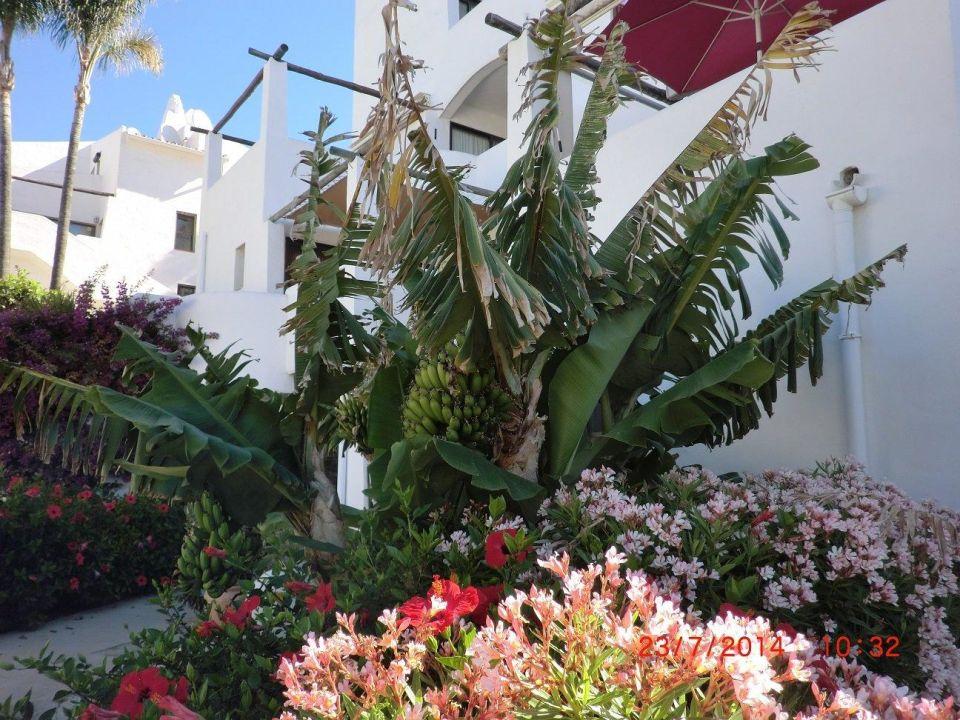 Costa Natura - Family Friendly Naturist Resort - Estepona