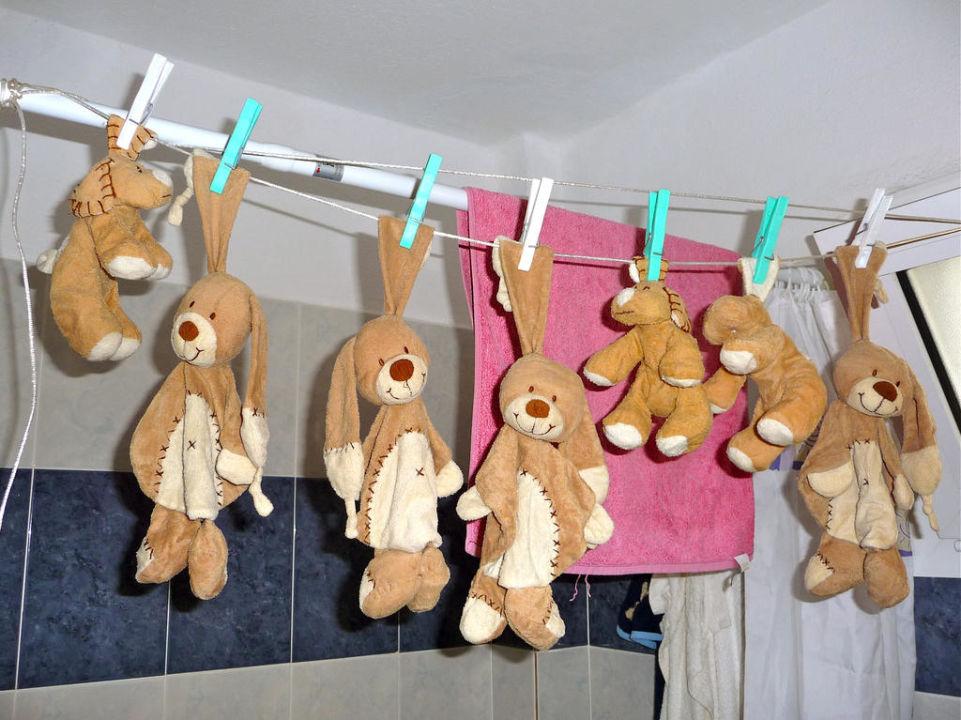 Wäsche der Schmusetiere Hotel Apollon