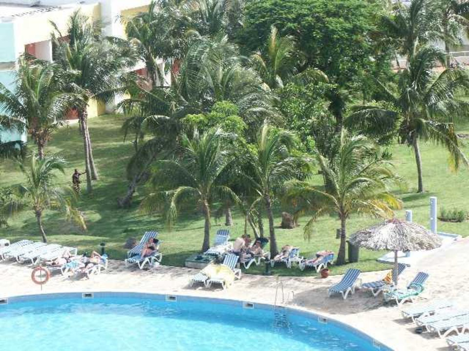 Pool Allegro Palma Real