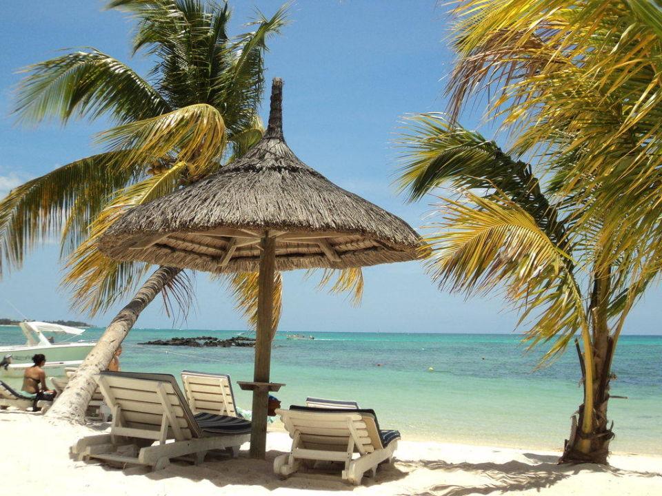 strandliegen und sonnenschirm am hotelstrand hotel merville beach grand baie holidaycheck. Black Bedroom Furniture Sets. Home Design Ideas