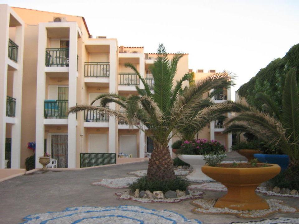 Palmen im Hotel Golden Beach Rethymnon