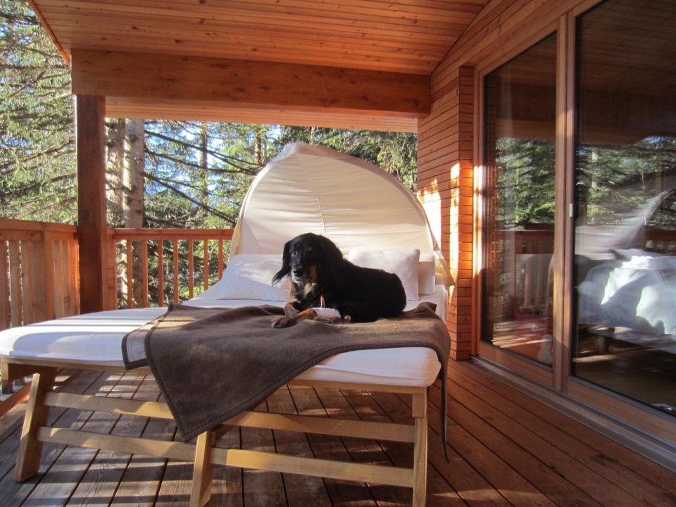 baumhaus terrasse das kranzbach kr n holidaycheck bayern deutschland. Black Bedroom Furniture Sets. Home Design Ideas
