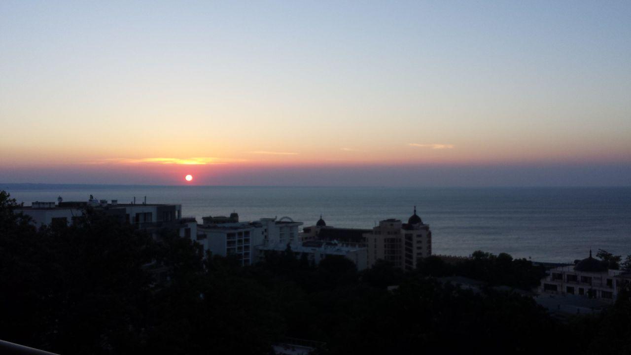 Blick aus dem Zimmer PrimaSol Sunlight Sunrise