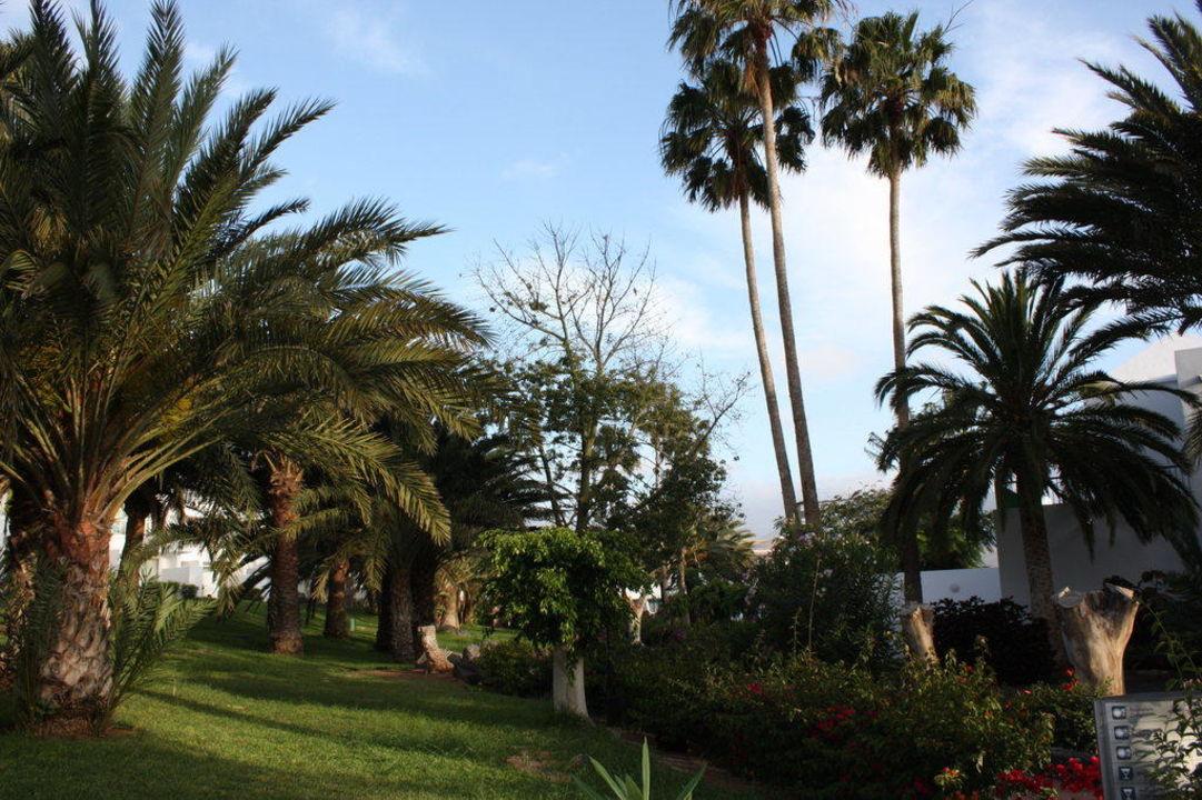 Alles grün und schön angelegt Hotel Riu Paraiso Lanzarote Resort