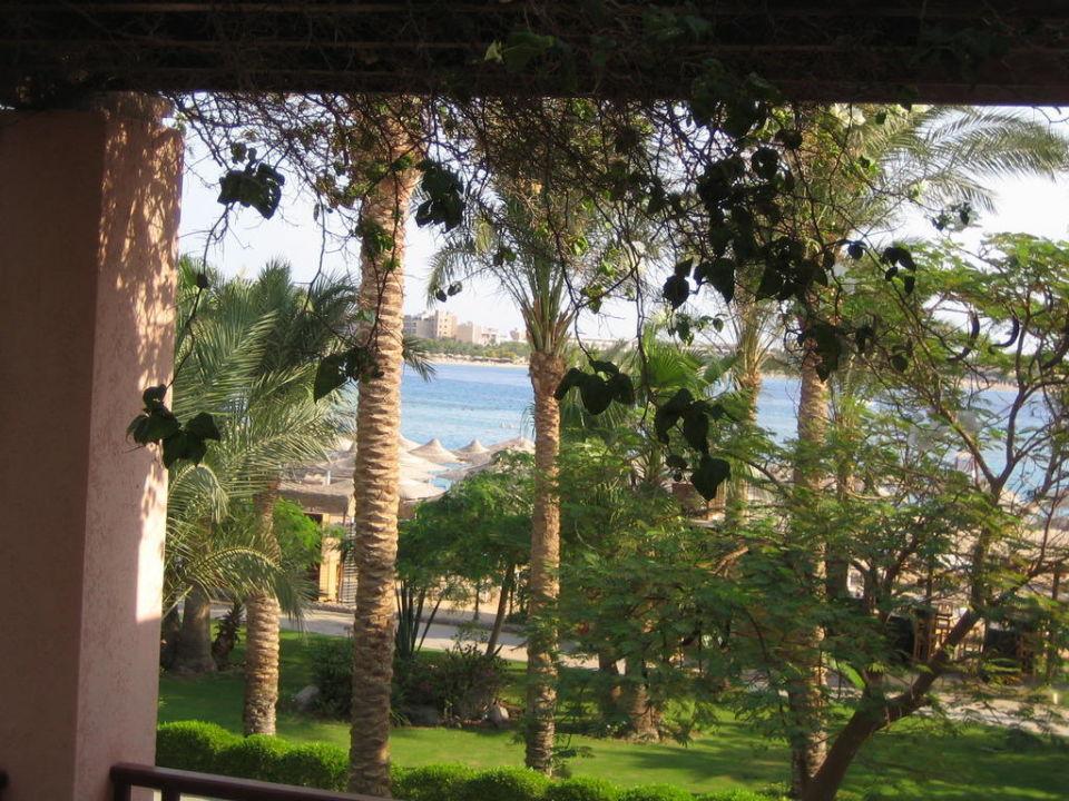 Ausblick vom Balkon Hotel Iberotel Makadi Beach