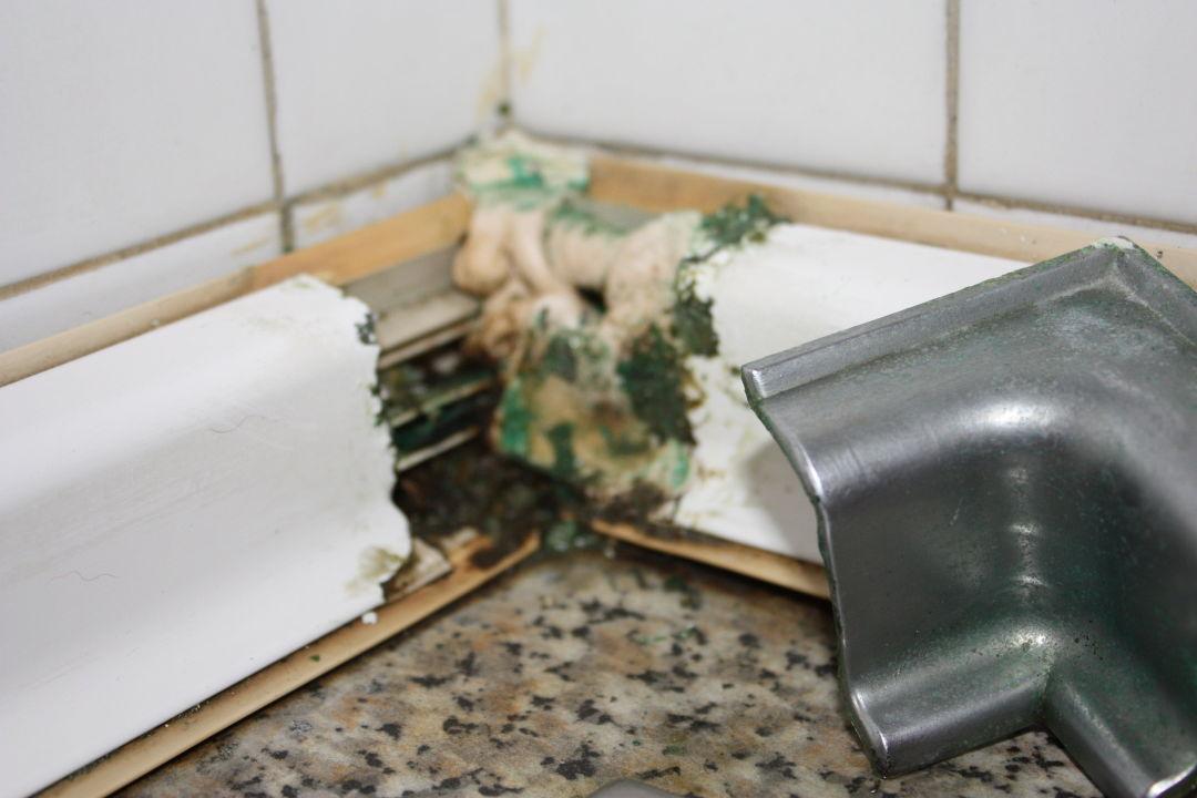 """bild """"küche - schimmel"""" zu hotel bungalows laura in maspalomas"""