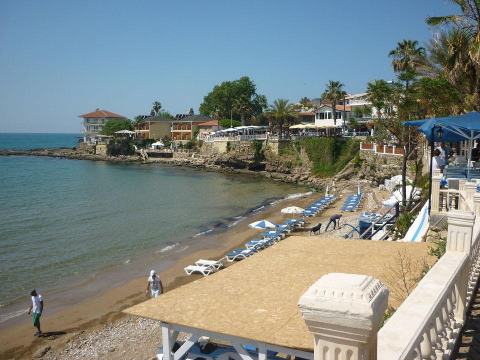 Quot Strand Am Hafen Quot Hotel Side Miami Beach In Side Holidaycheck T 252 Rkische Riviera T 252 Rkei