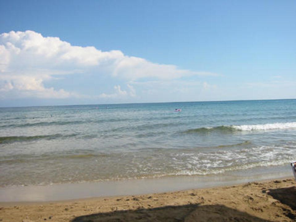 Strand des Hotels Palm Beach Palm Beach Hotel