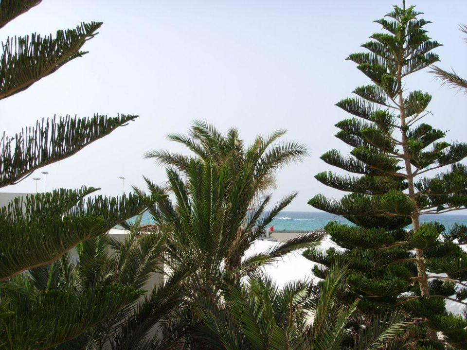 Blick aus dem Zimmer. SENTIDO Djerba Beach