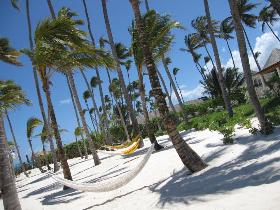 Relaxzone am Strand Secrets Royal Beach Punta Cana - Adults only