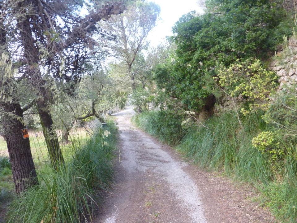 Zufahrt zur Finca Finca Miranda