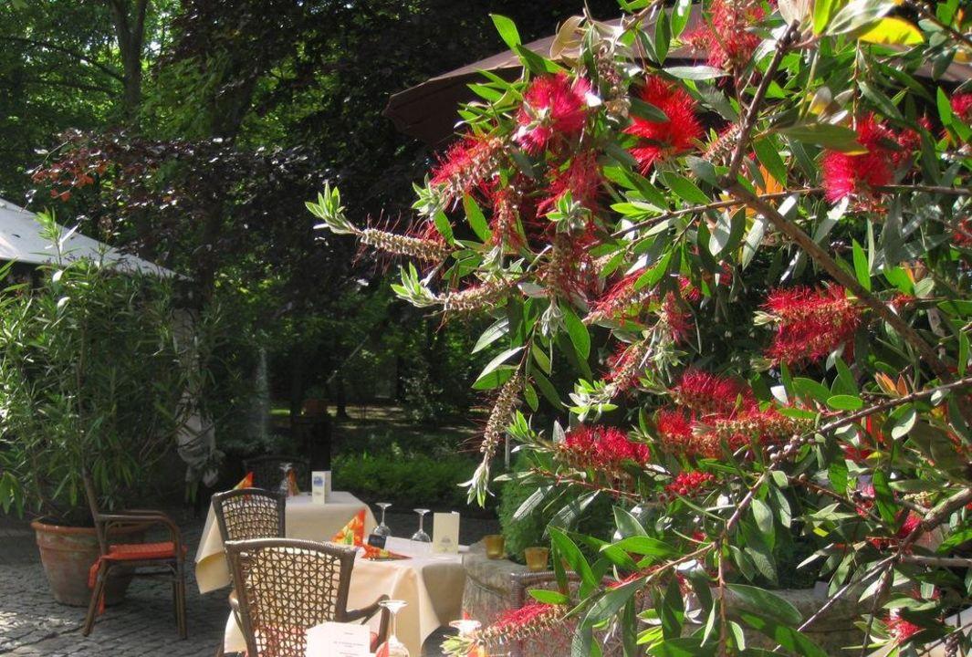 Garten Parkhotel  Landidyll Wilminks Parkhotel