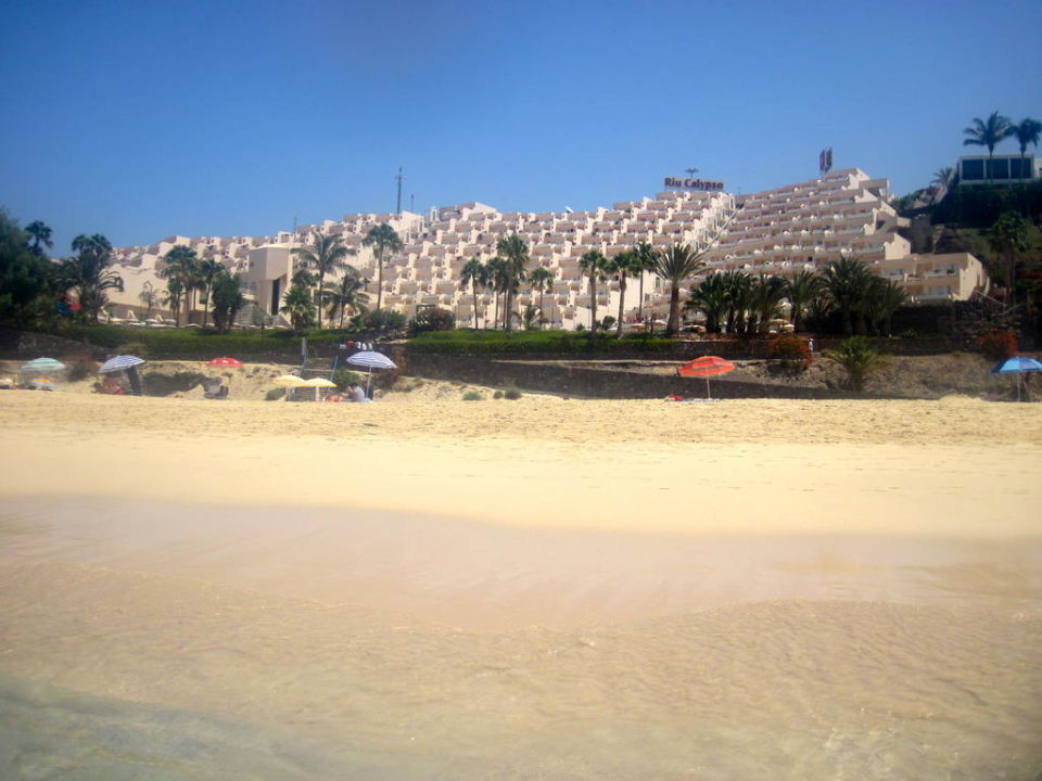 Hotel Riu Calypso Hotel Riu Palace Jandia
