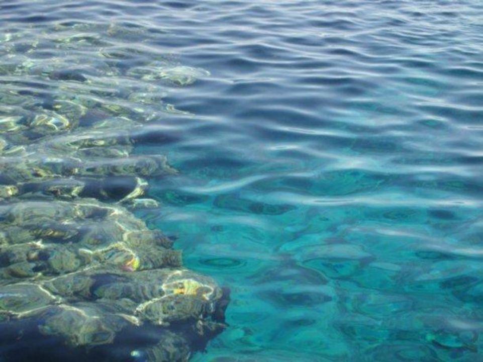 Korallenriff Sharm Resort