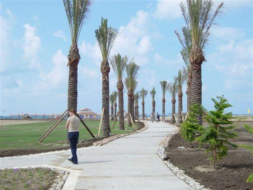 Xanthe Resort - Weg zum Strand lti Xanthe Resort & Spa