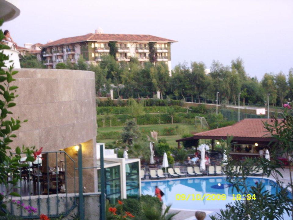 Blick über den Pool Hotel Alba Resort