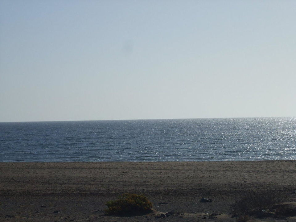 Strand beim Hotel Hotel Riu Paraiso Lanzarote Resort