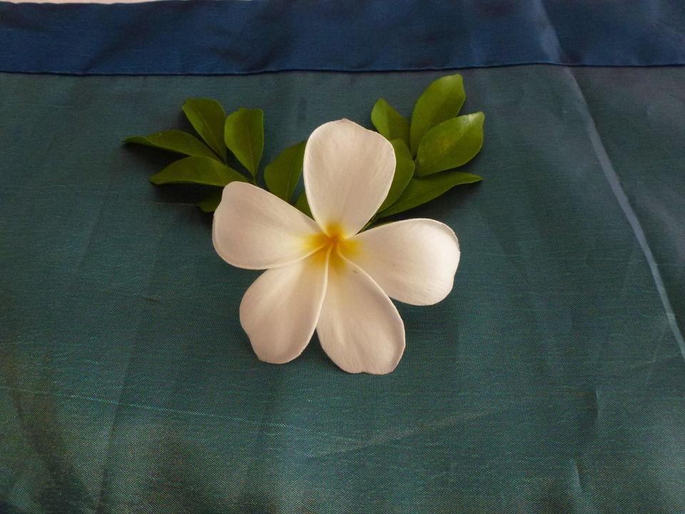 Zimmerdekoration mimosa resort spa ban bang po for Zimmerdekoration