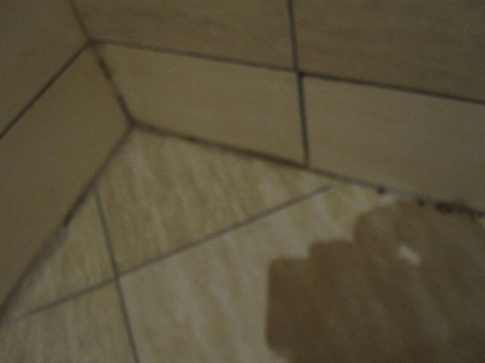 schimmel in der dusche hotel cazablanka casablanca obzor holidaycheck bulgarien s den. Black Bedroom Furniture Sets. Home Design Ideas