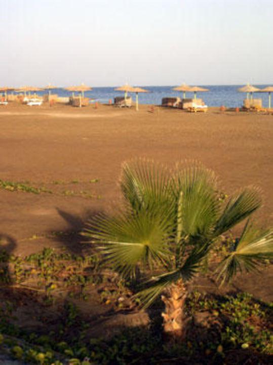 Strand Shams Alam Beach Resort