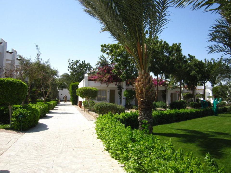 Garten und Strandbungalows Menaville Safaga