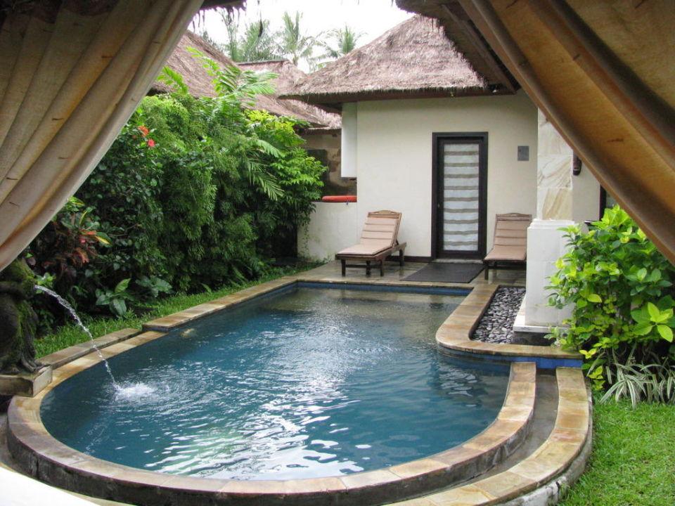 Privater Pool Furama Villas & Spa Ubud