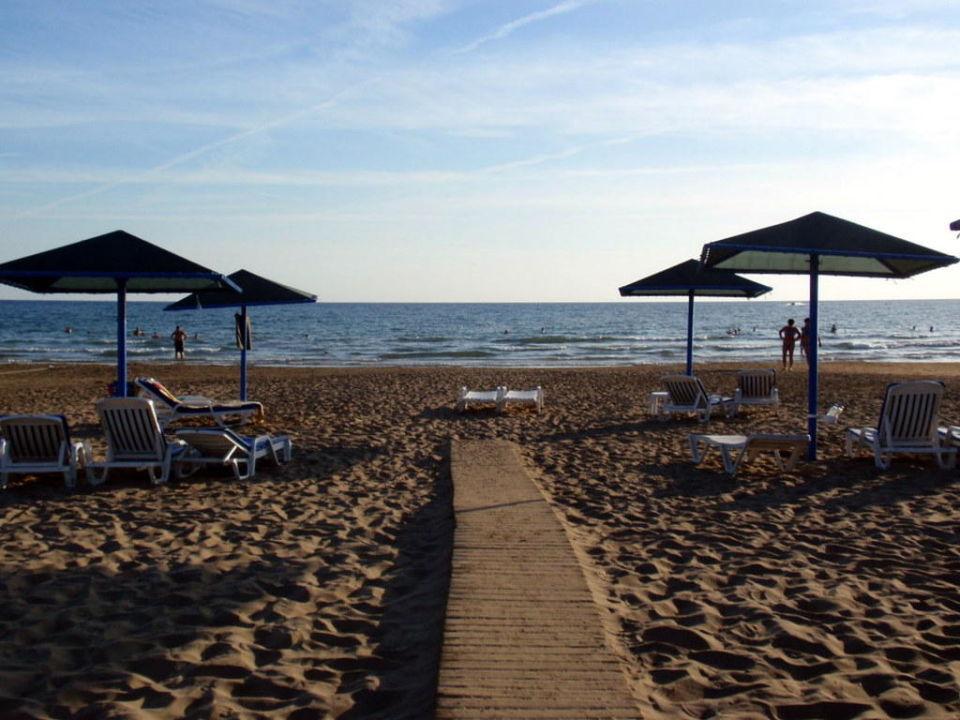 Nochmal der Strand Paloma Oceana Resort
