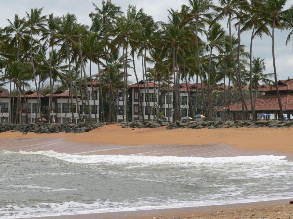 Blick vom Strand zum Hotel Club Hotel Dolphin