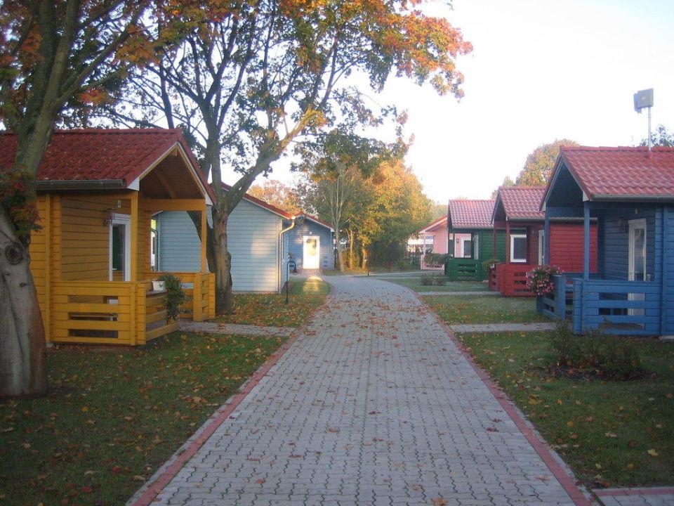 wohnsiedlung serengeti park hodenhagen hodenhagen holidaycheck niedersachsen deutschland. Black Bedroom Furniture Sets. Home Design Ideas