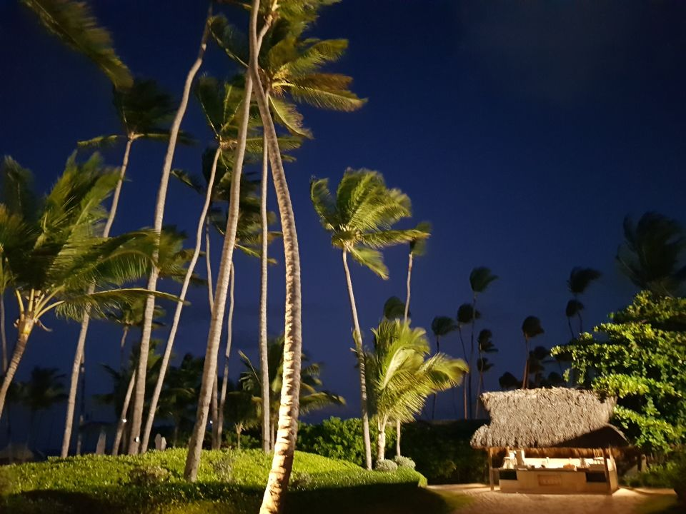 Gartenanlage Secrets Royal Beach Punta Cana - Adults only