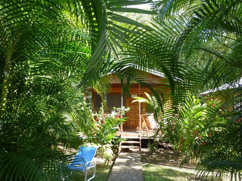 Fabulous Bungalow Etwas Weiter Weg Vom Strand Picard Beach Cottages Download Free Architecture Designs Scobabritishbridgeorg