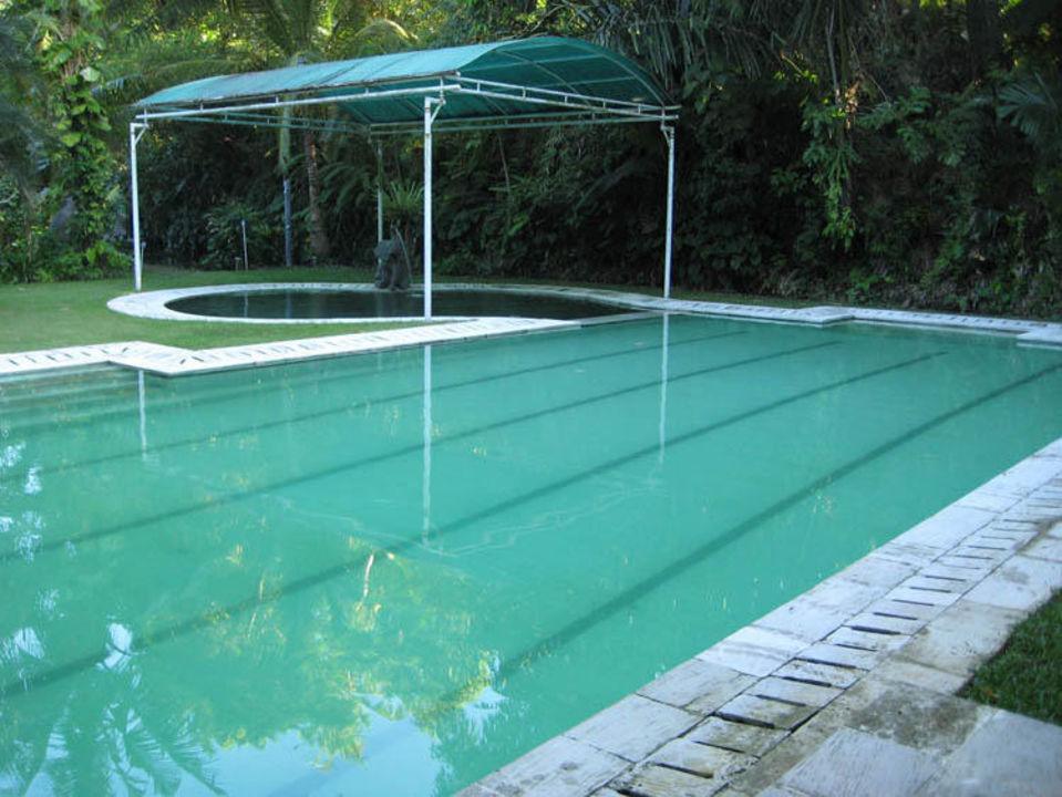 Pool Jiwa Damai Jiwa Damai Retreat Bali