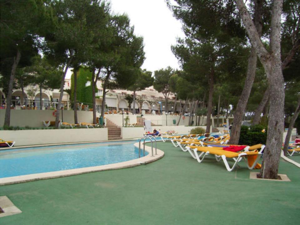 Meditäranes Restaurant Iberostar Club Cala Barca