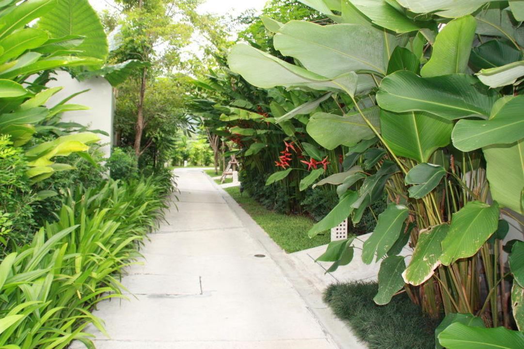 Tropischer Garten Metadee Resort & Villas