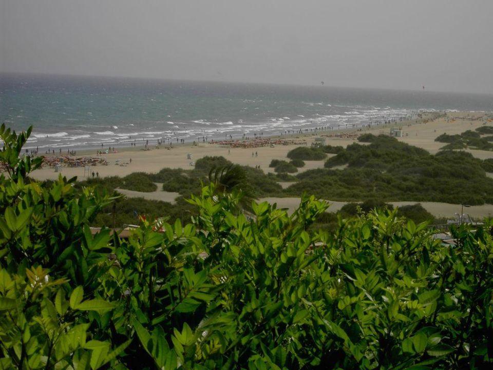 strand hotel riu palmitos playa del ingles holidaycheck gran canaria spanien. Black Bedroom Furniture Sets. Home Design Ideas