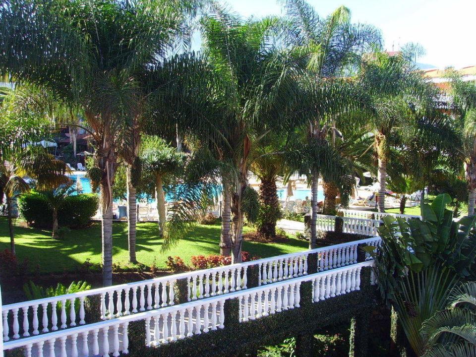 Garten in Richtung Pool Hotel Riu Garoe