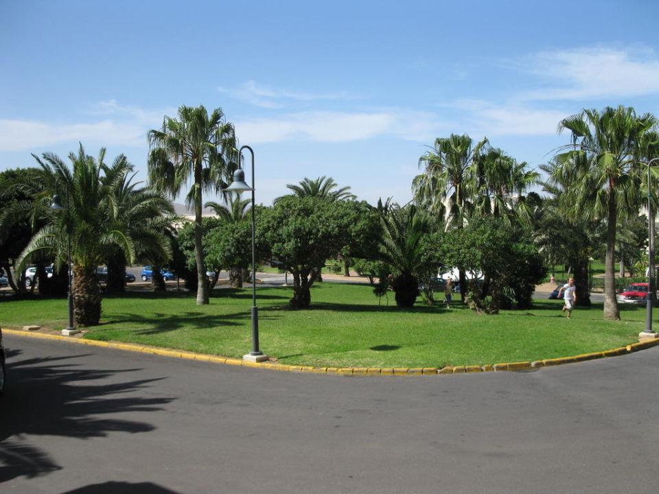 Vor dem Hoteleingang Hotel Riu Oliva Beach Resort