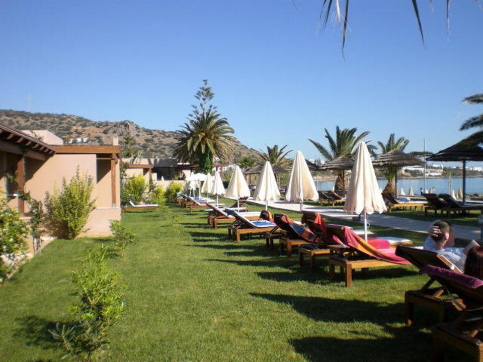 bild bungalow mit privatpool zu sentido blue sea beach in stalis. Black Bedroom Furniture Sets. Home Design Ideas
