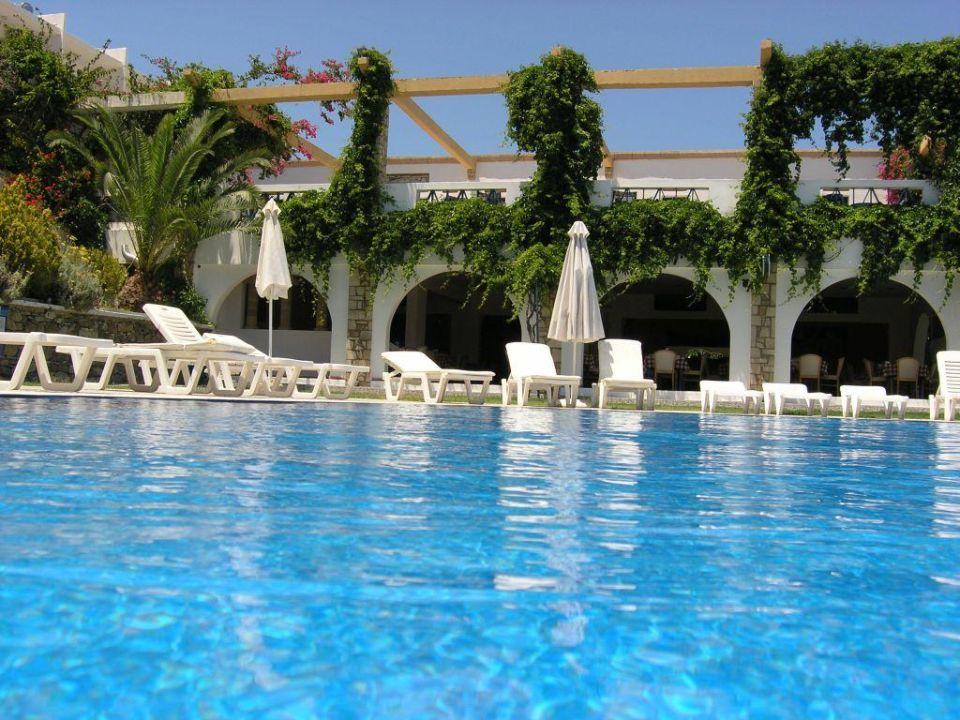 Blick über den Pool in den Speisesaal Ekaterini Hotel