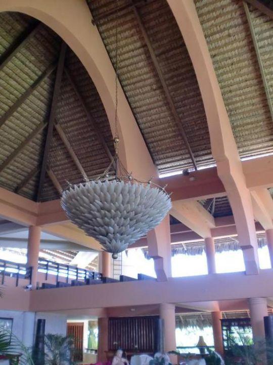 Lobby Hotel Viva Wyndham Dominicus Palace