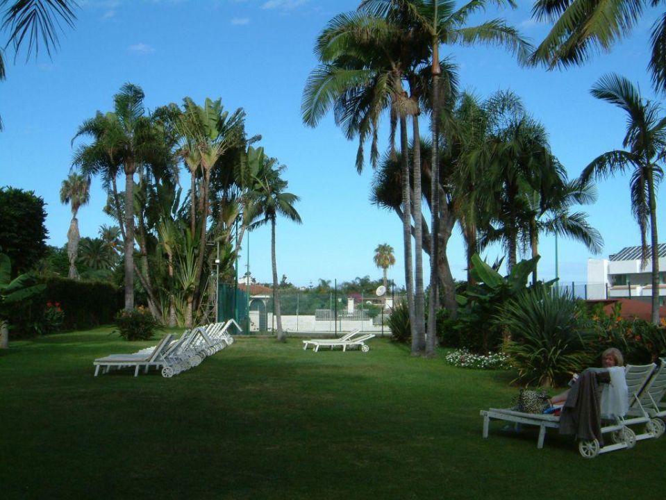 Gartenanlage am Hotel Hotel Best Semiramis