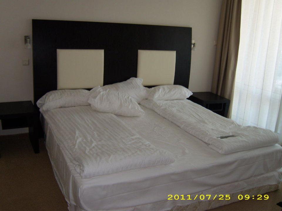 traumbett hotel calypso nessebar holidaycheck bulgarien s den bulgarien. Black Bedroom Furniture Sets. Home Design Ideas
