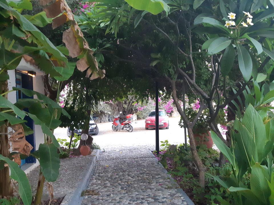 Gartenanlage Oasis Hotel & Bungalows Rhodos