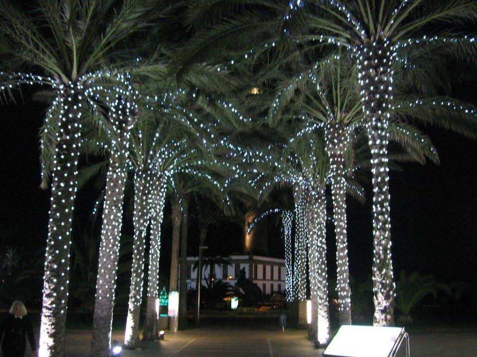Weihnachtsbeleuchtung am Hinterausgang Lopesan Costa Meloneras Resort, Spa & Casino