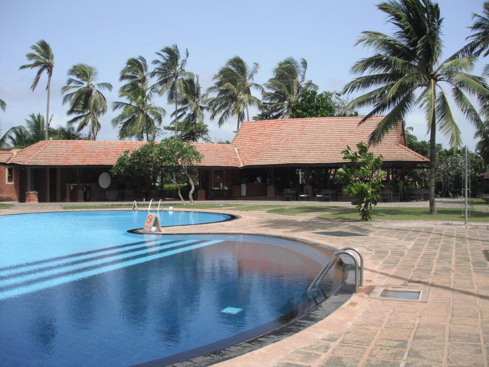 Pool und Poolbar Club Hotel Dolphin