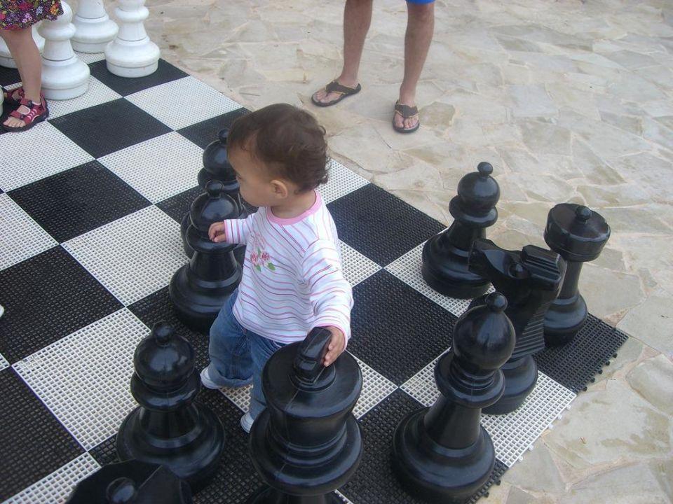 Schach im Hof Protur Badia Park