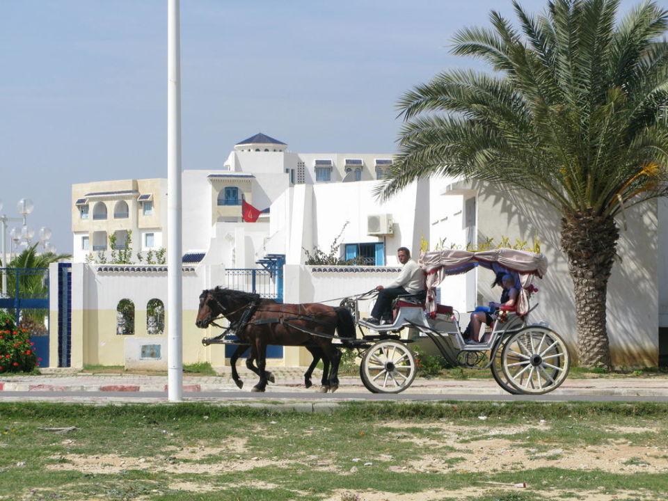 Widok przed hotelem ONE Resort El Mansour
