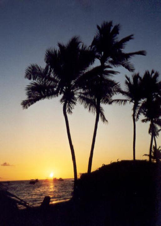 Sonnenaufgang in Punta Cana Dreams Palm Beach Punta Cana