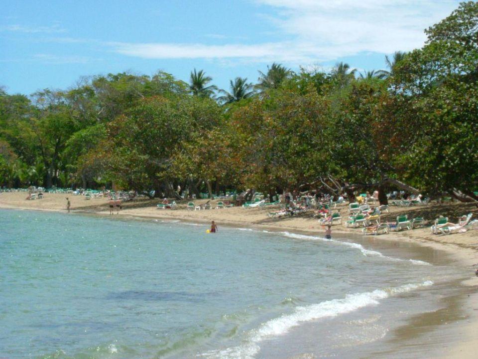 Strand in der Bucht von Maimon Playa Bachata Resort