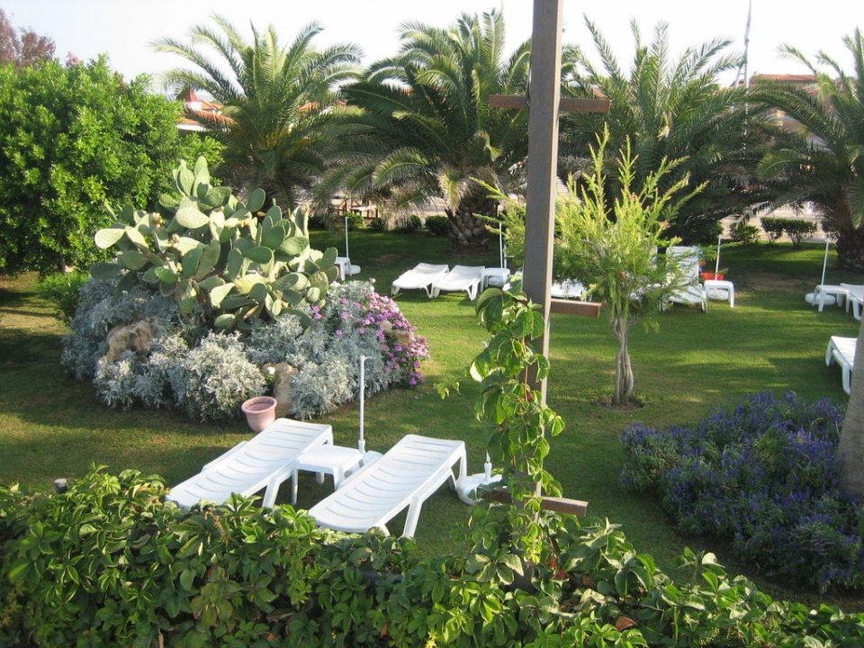 Teil vom Garten Hotel Club Gypsophila Holiday Village